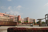 宁化县城东中学